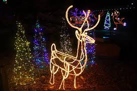 zoo lights at hogle zoo utah s hogle zoo heim facebook