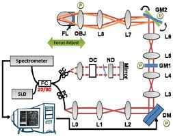osa wavefront sensorless adaptive optics optical coherence
