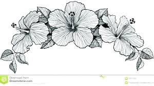 coloring pictures of hibiscus flowers hibiscus coloring pages flower coloring page drawing flowers pages