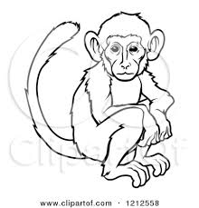 gallery cartoon monkey drawings drawing art gallery