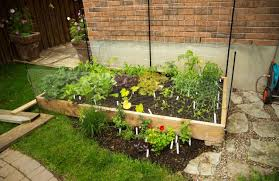 vegetable garden for small spaces edible essentials u2013 urban seedling