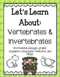 invertebrates and vertebrates card sort free pdf picture cards