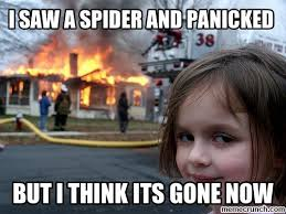 I Saw A Spider Meme - saw a spider and panicked