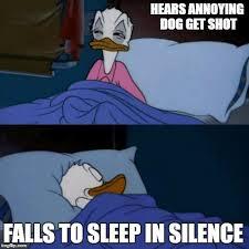 Donald Meme - donald duck bed memes imgflip