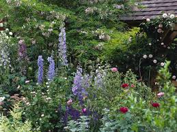 small english country garden designs with english perennial garden