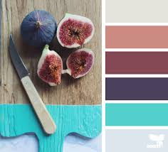 culinary color archives design seeds