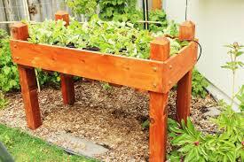 raised garden beds 101 tips on planning building u0026 using