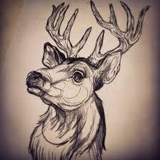 deer head deer head by dicknosetengu on deviantart