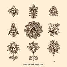 ornamental flowers collection vector free