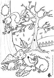 squirrel hedgehog coloring pages hellokids