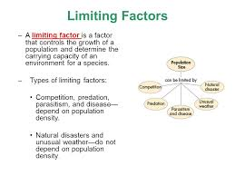 chapter limits to growth ppt video online download