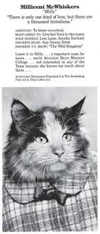 cat high yearbook 263 best literary cats images on books cats and animals