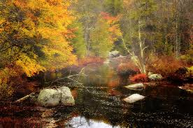 New Hampshire scenery images New hampshire wilderness autumn scenic photograph by expressive jpg