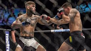 cody garbrandt u0027you put dominick cruz in front of me i ko him