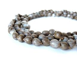 s tears rosary s tears seeds ready for beading and or viable for growing