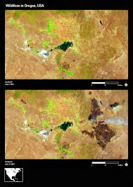 Usgs Wildfire Data by U S Geological Survey Land Imaging Report Site