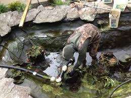 backyard pond maintenance backyard ideas