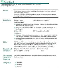 Profile On Resume Example by Exclusive Idea What Goes In A Resume 14 Email Cover Letter Format