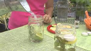 how to make a natural insect repellent candle youtube