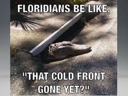 Gator Meme - gator cold front meme i love south florida