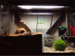 aquarium halloween hca hermit crab association u2022 view topic diy aquarium to vivarium
