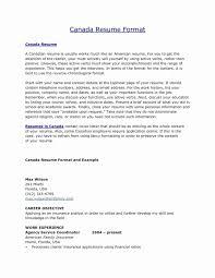 usa resume usa resume template beautiful usa resume builder