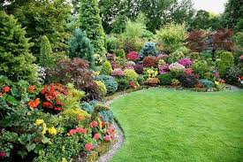 Garden Shrubs Ideas Landscaping Front Yard With Shrubs Landscape Design Within