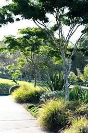 Theme Garden Ideas Coastal Garden Design Best Coastal Gardens Ideas On Coastal