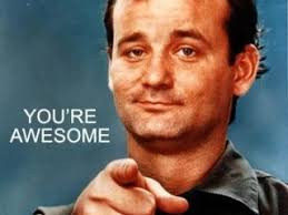 Bill Murray Memes - youre awesome bill murray 320x240 ninefrogs