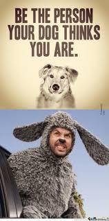 Wilfred Meme - i want a dog like wilfred by sveta piva meme center