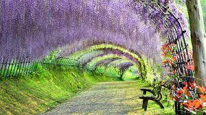 beautiful places photos japan s 34 most beautiful places cnn travel