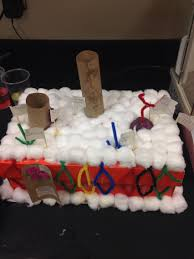 pin by emma twehues on cell membrane model pinterest models