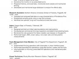 Fire Department Resume Example Of A Work Resume Business Inventory Templates Sample