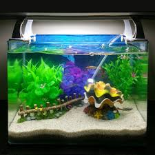 new decoration aquarium fish tank air scallop shell