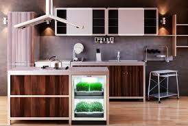 indoor kitchen home building trends indoor kitchen gardens taking root