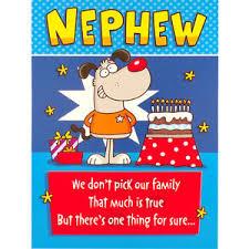 birthday cards for nephew nephew birthday card rude humorous greetings card ebay