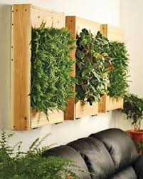 ideas for growing herbs right in your kitchen growing herbs