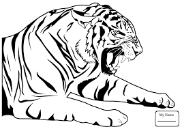 snow tiger coloring page category all categories 101 rallytv org