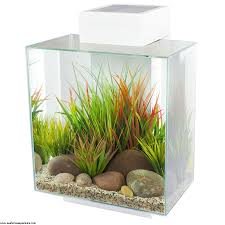 Fluval Edge Aquascape Fluval Edge 46l Led White Seahorse Aquariums Ltd