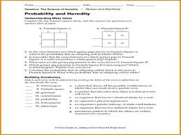 pearson education worksheet phoenixpayday com