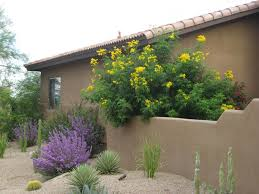 agreeable desert environments landscape and design llc for