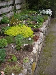 Simple Rock Garden Ideas by How To Make A Rock Garden Gardening Ideas