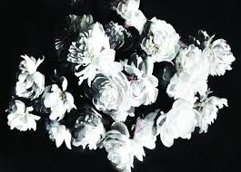 peonies bouquet white peony wallpaper bouquet of peonies mural anewall