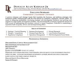 It Executive Resume Samples by Executive Summary Resume Examples