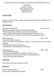 Free Sample Resume For Customer Service Representative Resume Lyon Lille Coupe De La Ligue Do Your Papers Researches