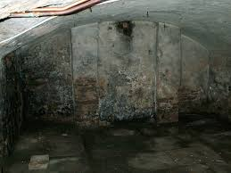 damp basement google search basements pinterest damp