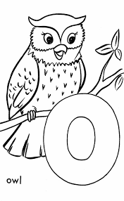 top 25 free printable owl coloring pages online owl activities