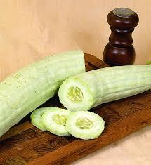 armenian cucumber long high yield extra mild