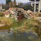 Botanical Gardens El Paso El Paso Desert Botanical Garden 30 Photos Venues Event