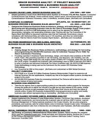 It Business Analyst Resume Sample by 20 It Resume Templates In Pdf Free U0026 Premium Templates